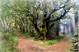 """""""Road Not Taken"""", By: Nar Kumar, Blogspot.com"""