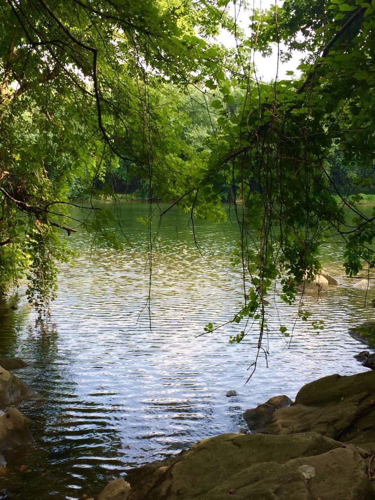 The Potomac River itself