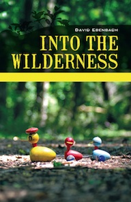 into-the-wilderness